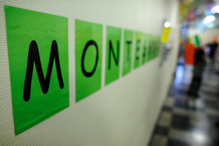 Montessori-Zweig